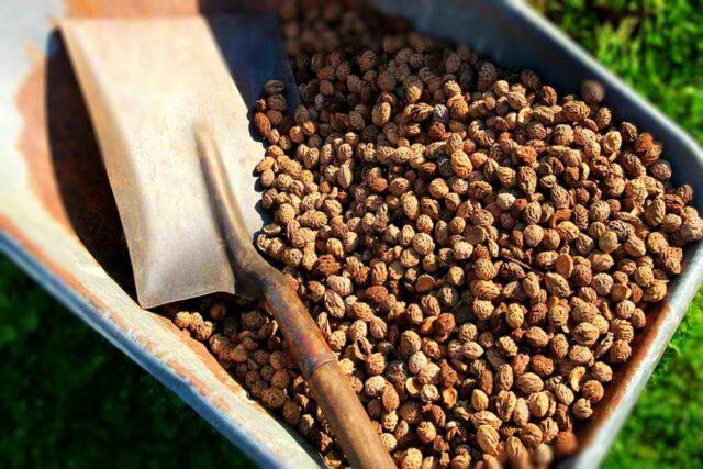 şeftali çekirdeği kabuğu satışı fiyatı satıcıları 0012peach kernel perziksteen shell Turkey