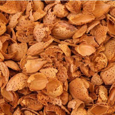 Badem kabuğu satışı fiyatı satıcıları 0007Almond shell Turkey