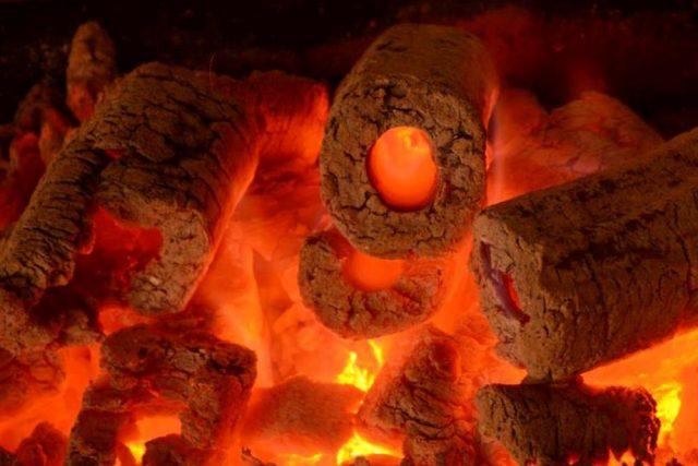 Fındık Kabuğu Kömürü satışı fiyatı satıcıları 0006 hazel nutshell Turkey