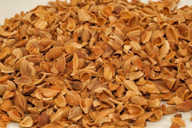 kayısı çekirdeği kabuğu satışı fiyatı satıcıları - Apricot kernel shell turkey (6)